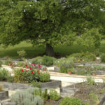 Le jardin des plantes médicinales