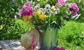 Les saisons se respectent aussi pour les fleurs !