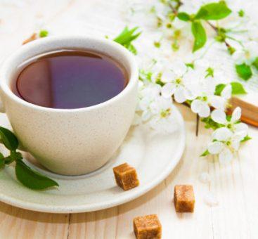 Le thé : pouvoir antioxydant par exellence