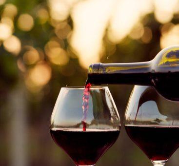 Le vin, un atout santé: le point sur le French Paradox!