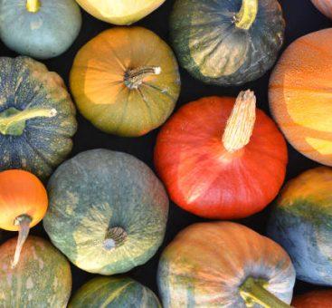 Vos fruits et légumes de décembre, pour une santé au top!