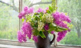 Offrir des fleurs oui, mais alors des fleurs de saison, BIO et équitables!