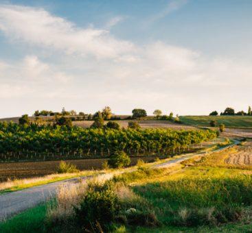 Le Gers, la belle région de Fleurance !