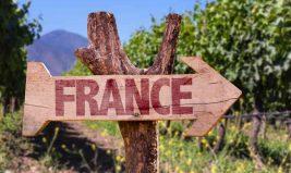 Traçabilité alimentaire : les garanties de la certification BIO