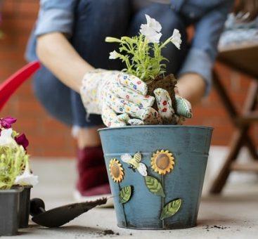 Votre balcon, refuge de la biodiversité !