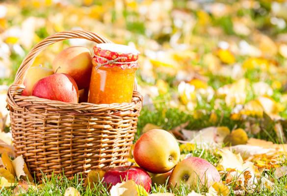 Découvrez les fruits et légumes de l'automne