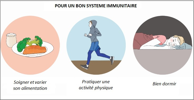systeme-immunitaire