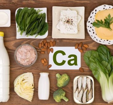 Le calcium, un nutriment indispensable au bon fonctionnement de l'organisme