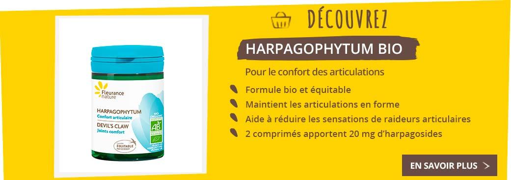 bloc-harpagophytum