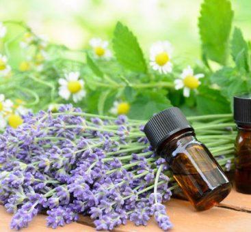 L'aromathérapie à la loupe