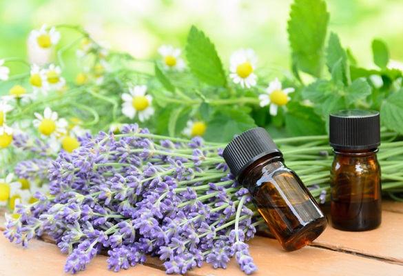 aromatherapie-loupe