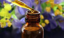 Les huiles essentielles et leurs actions sur l'organisme