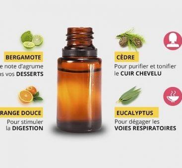 Tout savoir sur les huiles essentielles