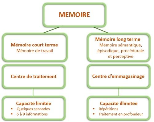 schema memoire