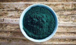 La spiruline, végétal précieux d'origine marine