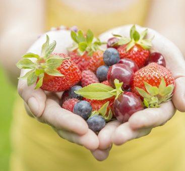 Comment limiter l'exposition aux polluants de notre alimentation ?