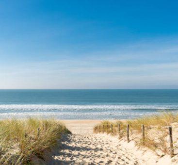 4 gestes écolo à la plage pour préserver l'environnement