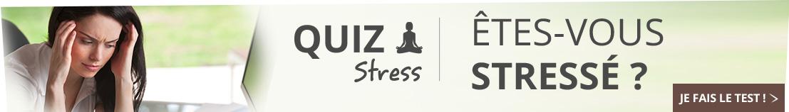 bandeau-dossier-conseil-quizz-stress