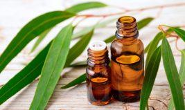 Les huiles essentielles alliées des défenses naturelles