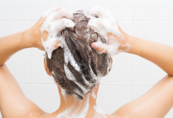 article-shampoing-bio