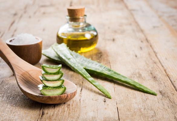 Les plantes qui hydratent notre peau au quotidien : argan, karité, aloe vera…