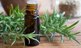 Reconnaître une huile essentielle de qualité