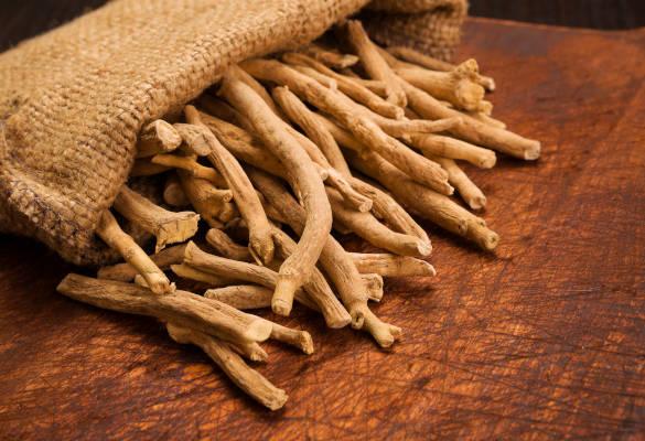 L'ashwagandha, la plante de la vitalité