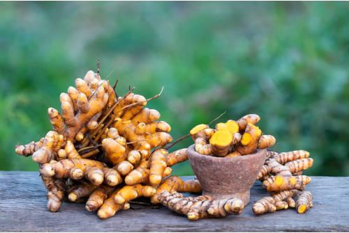widget-racines-curcuma